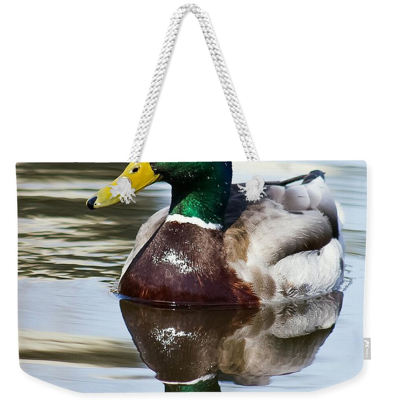 Duck Weekender Tote Bag featuring the photograph Sitting Pretty by Nikki Vig