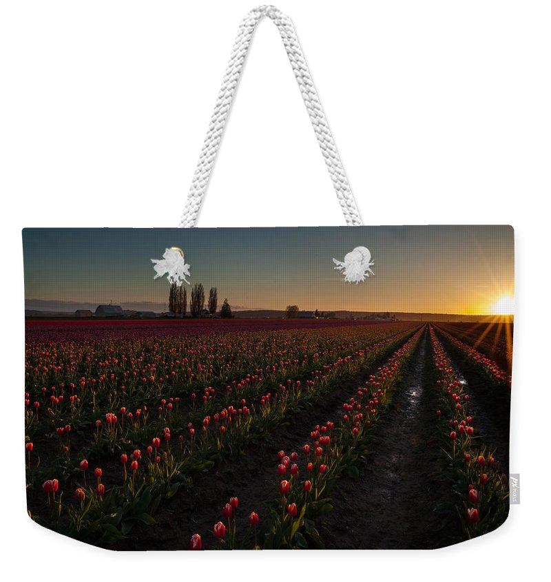 Skagit Tulip Festival Weekender Tote Bag featuring the photograph Skagit Dusk Tulip Fields by Mike Reid