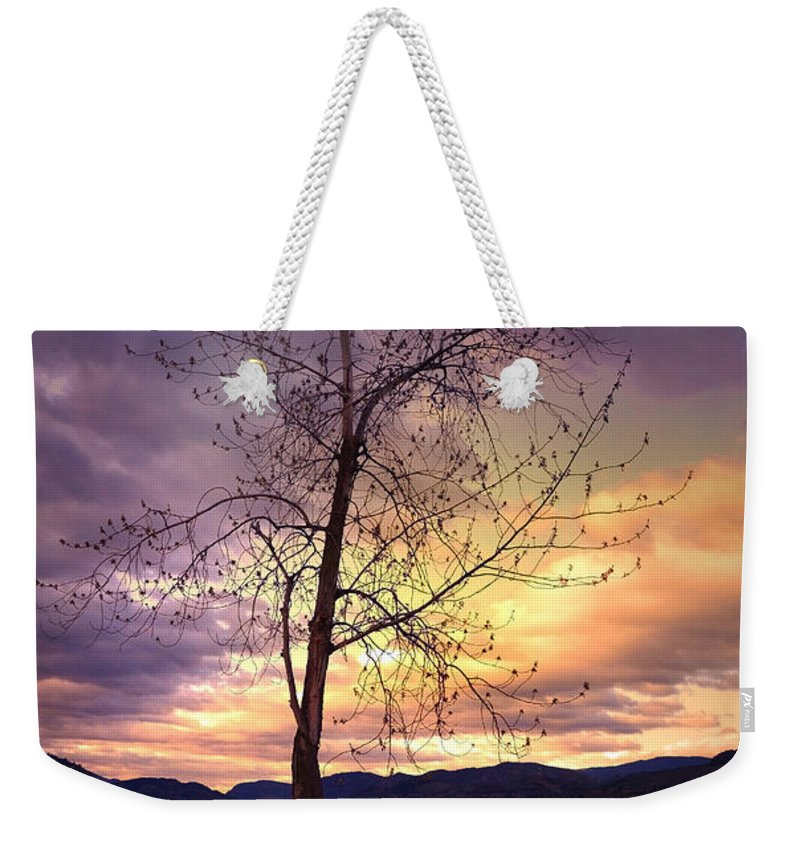 Saturday Weekender Tote Bag featuring the photograph Skaha Lake On A Saturday Morning by Tara Turner