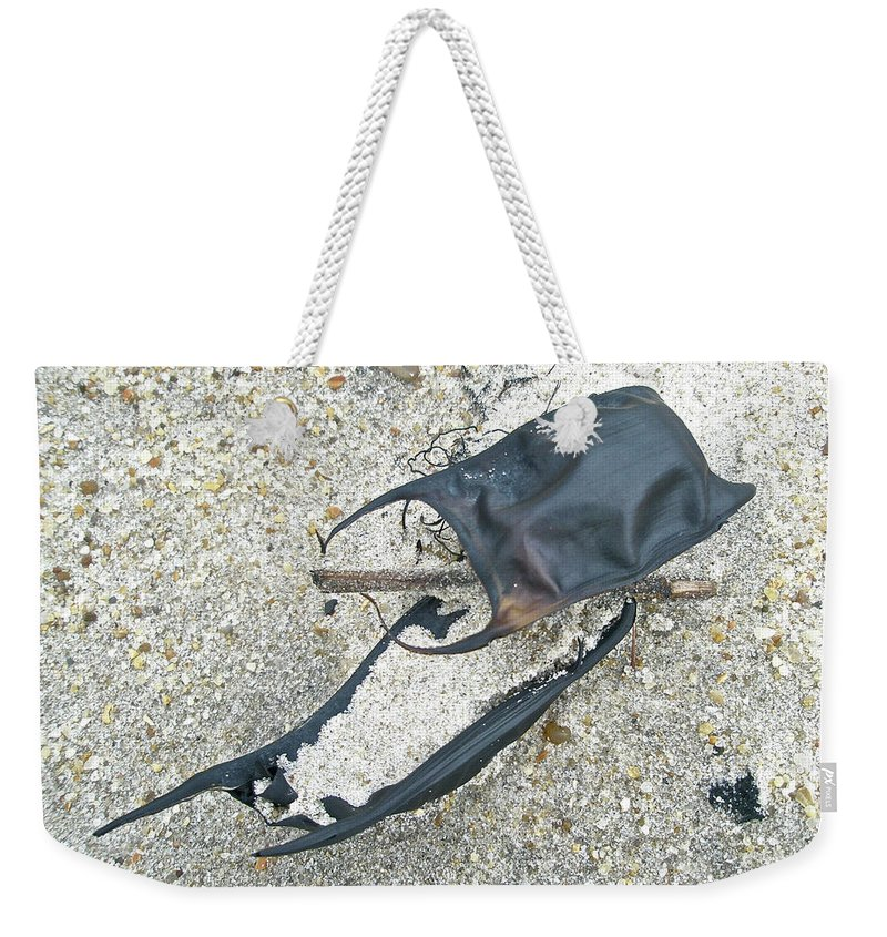 Ocean Weekender Tote Bag featuring the photograph Skate Egg Cases On Sand by Mother Nature