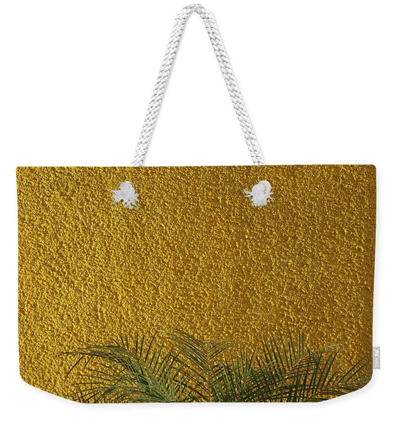 Abstract Weekender Tote Bag featuring the photograph Skc 1243 Colour And Texture by Sunil Kapadia