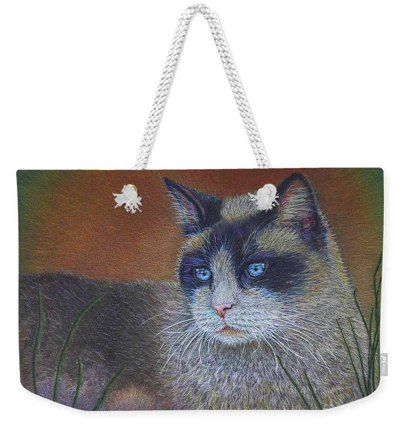 Cat Weekender Tote Bag featuring the drawing Skweela by Sari Sauls