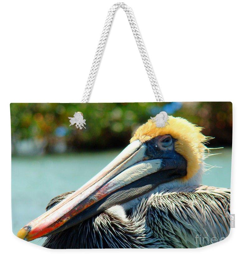 Pelican Weekender Tote Bag featuring the photograph Sleepy Pelican by Nancy L Marshall