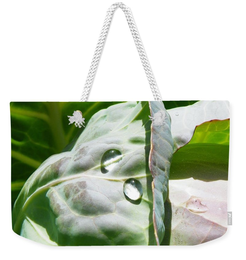 Sliced Weekender Tote Bag featuring the photograph Sliced Cabbage by Brian Boyle