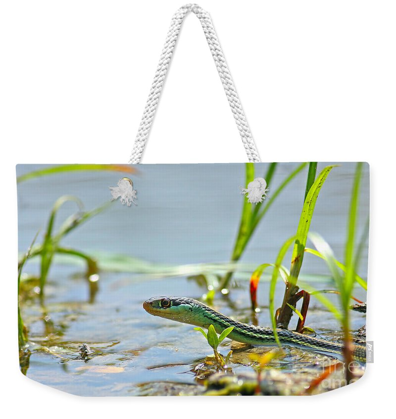 Ribbon Snake Weekender Tote Bag featuring the pyrography Slither by David Cutts
