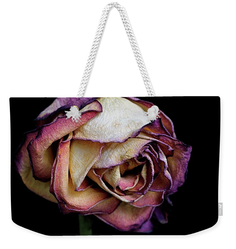 Dried Flower Weekender Tote Bag featuring the photograph Slow Fade by Rona Black
