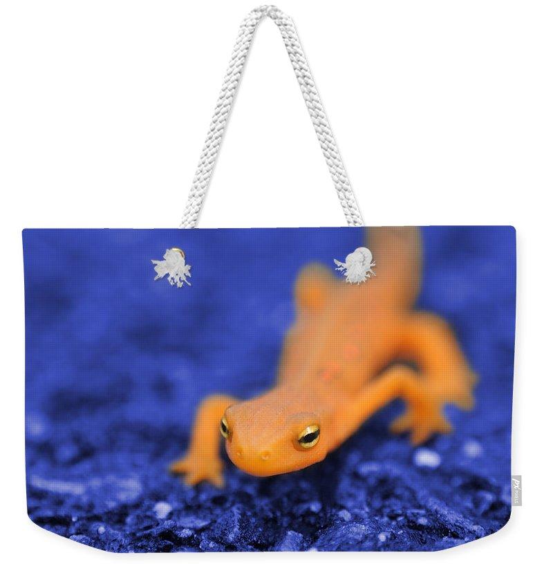 Salamander Weekender Tote Bags