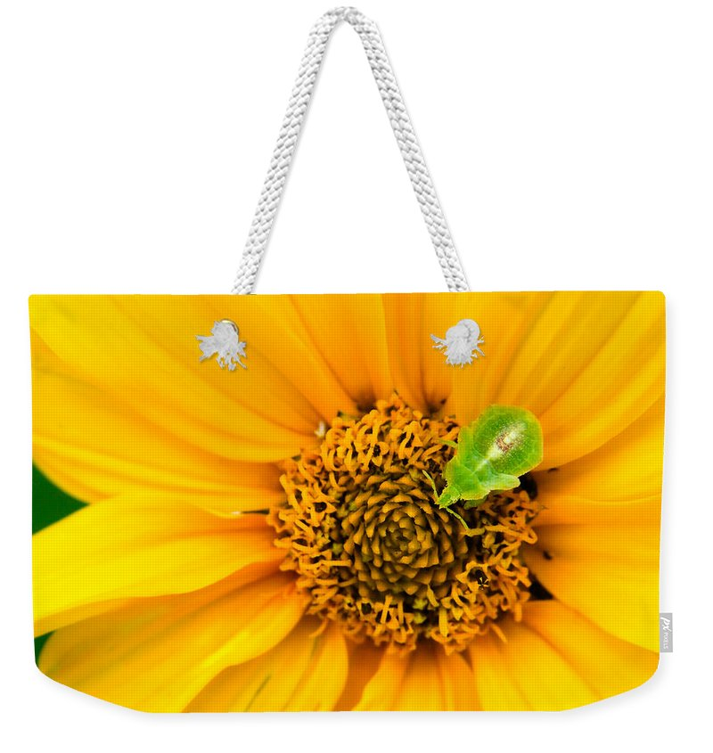 3scape Photos Weekender Tote Bag featuring the photograph Small World by Adam Romanowicz