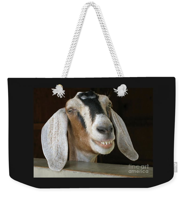 Goat Weekender Tote Bag featuring the photograph Smile Pretty by Ann Horn