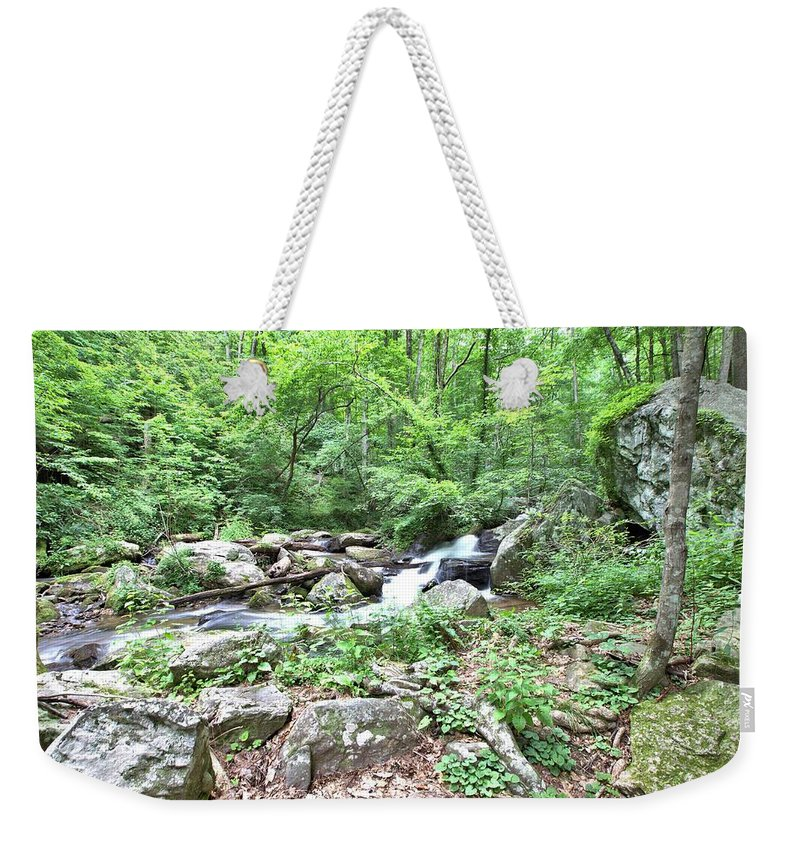 8799 Weekender Tote Bag featuring the photograph Smith Creek Downstream Of Anna Ruby Falls - 2 by Gordon Elwell