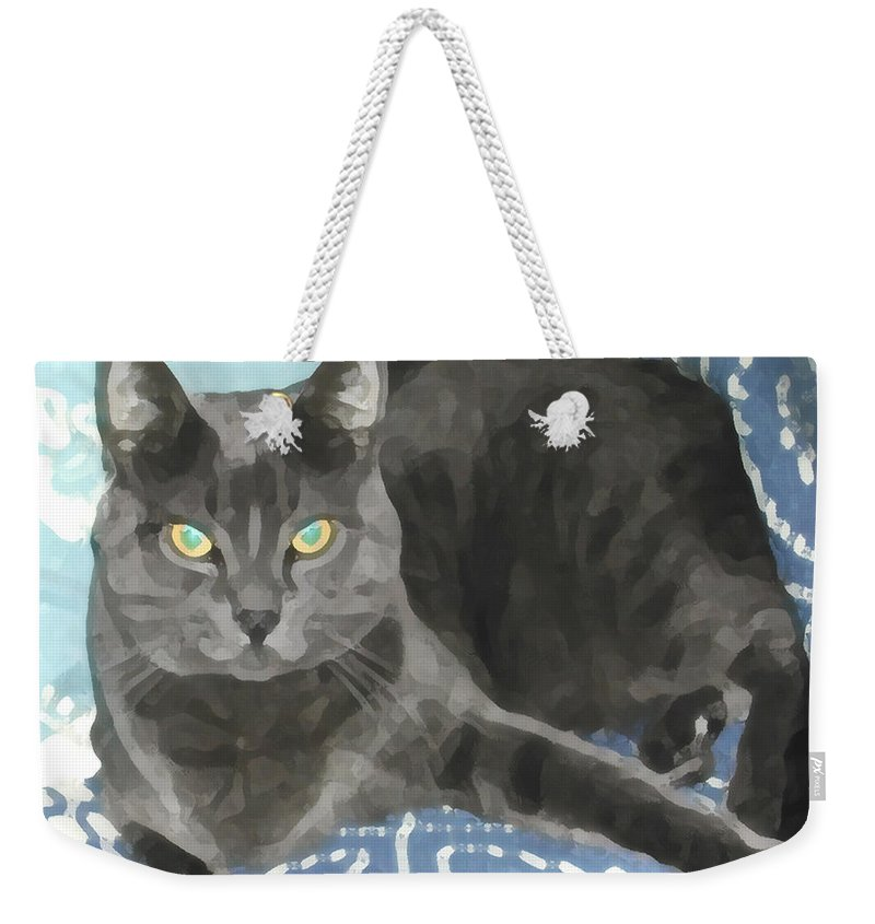 Grey Weekender Tote Bag featuring the photograph Smokey On A Blue Blanket by Jeanne A Martin