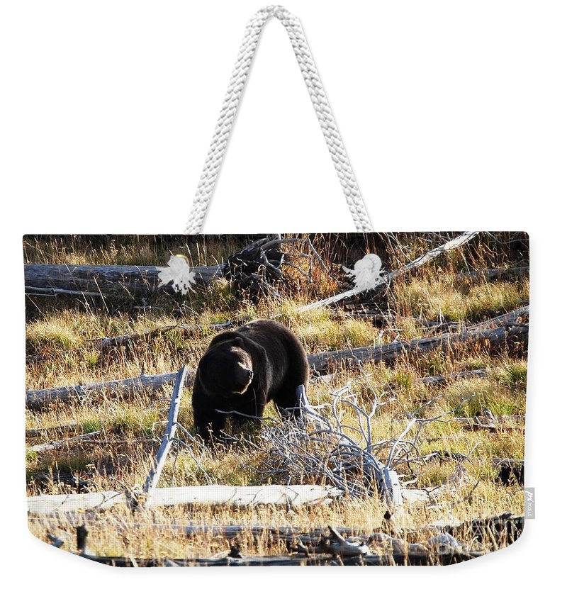 Grizzly Weekender Tote Bag featuring the photograph Snacking Bruin by Deanna Cagle