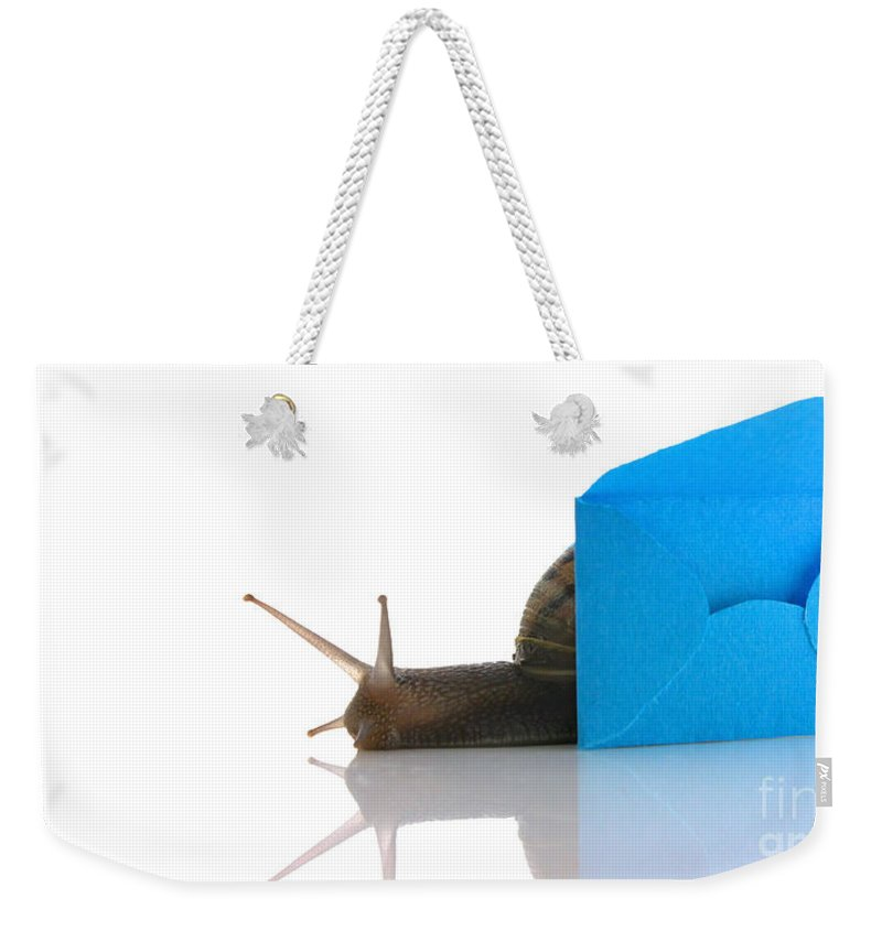 Letter Weekender Tote Bag featuring the photograph Snail Next To Miniature Mail Envelope by Simon Bratt Photography LRPS