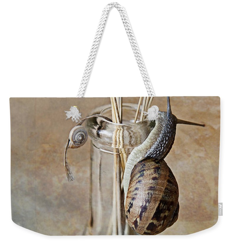 Snail Weekender Tote Bag featuring the photograph Snails by Nailia Schwarz