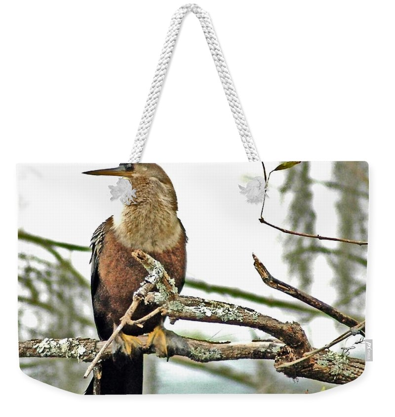 Anhinga Weekender Tote Bag featuring the photograph Snake Bird by Norman Johnson