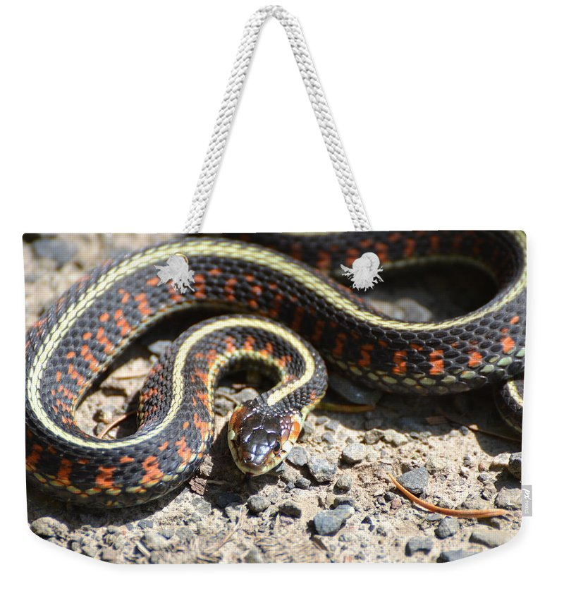 Snake Weekender Tote Bag featuring the photograph Snake by Robin White