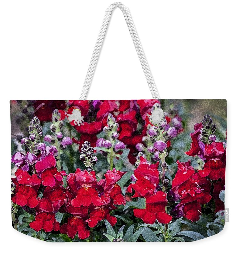 Snapdragons Weekender Tote Bag featuring the photograph Snappers by Rich Franco