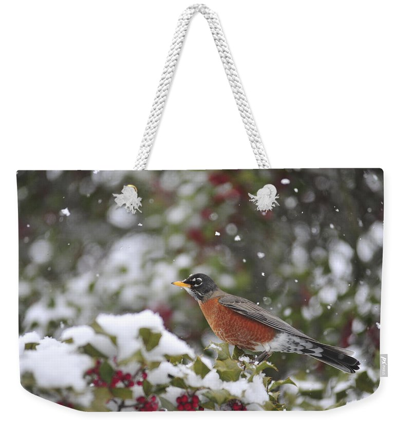 Snow Weekender Tote Bag featuring the photograph Snow Bird by Terry DeLuco