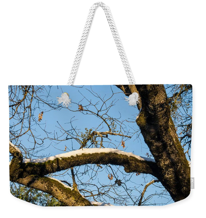 Snow Weekender Tote Bag featuring the photograph Snow In Oak by Mick Anderson
