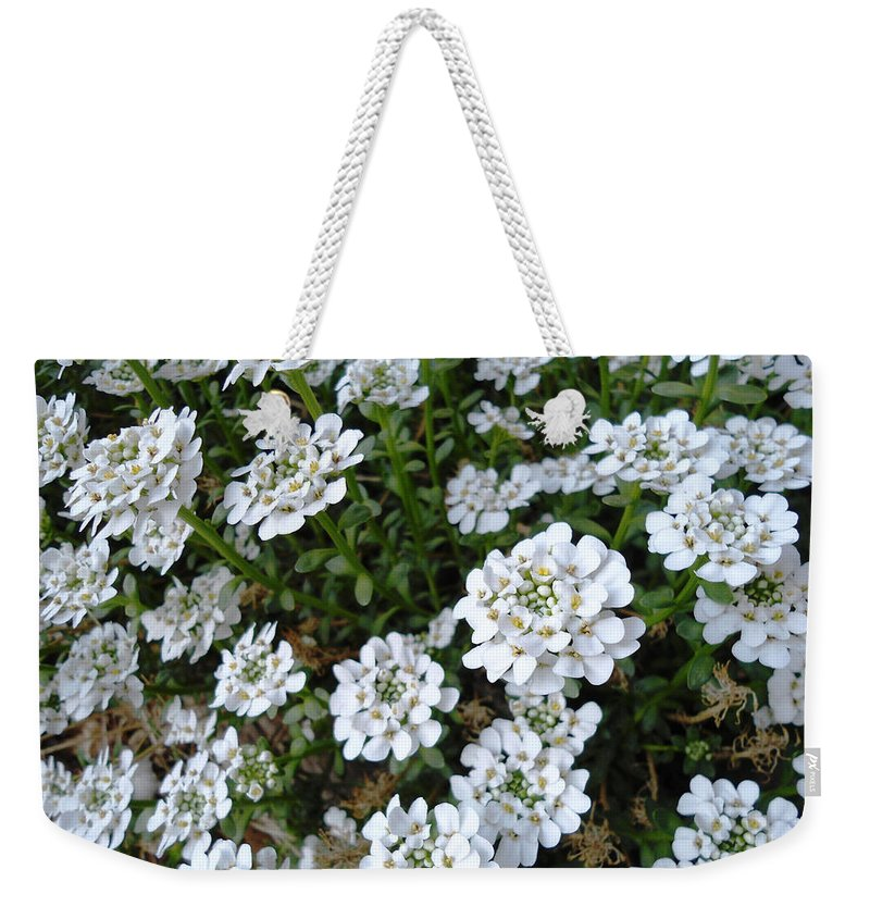 Flower Weekender Tote Bag featuring the photograph Snow In Summer by Lovina Wright