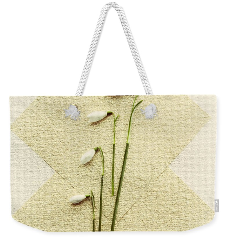 Spring Weekender Tote Bag featuring the photograph Snowdrops by David Ridley