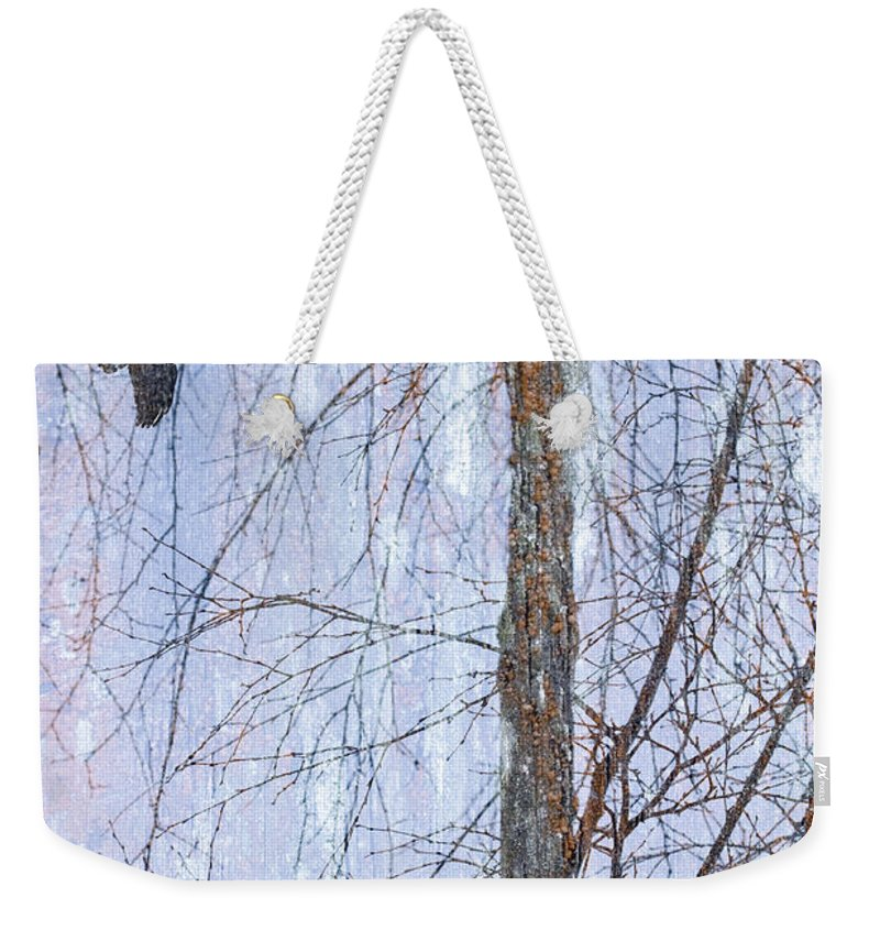 Tree Weekender Tote Bag featuring the photograph Snowy Tree by Carol Leigh