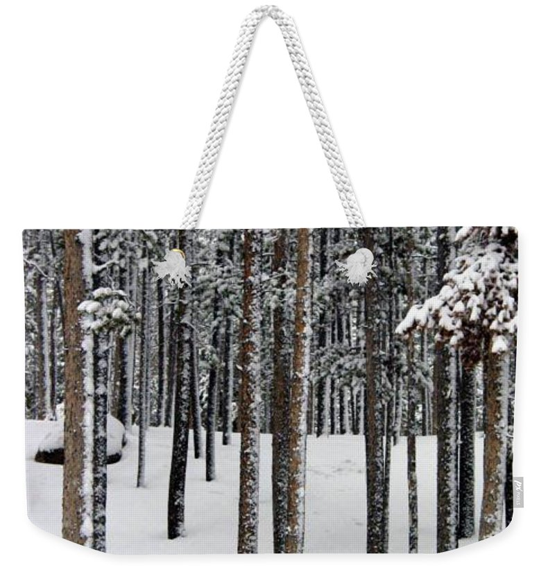 Winter In Woods Weekender Tote Bag featuring the photograph Snowy Walk In The Woods IIi Grand Lake Co by Jacqueline Russell