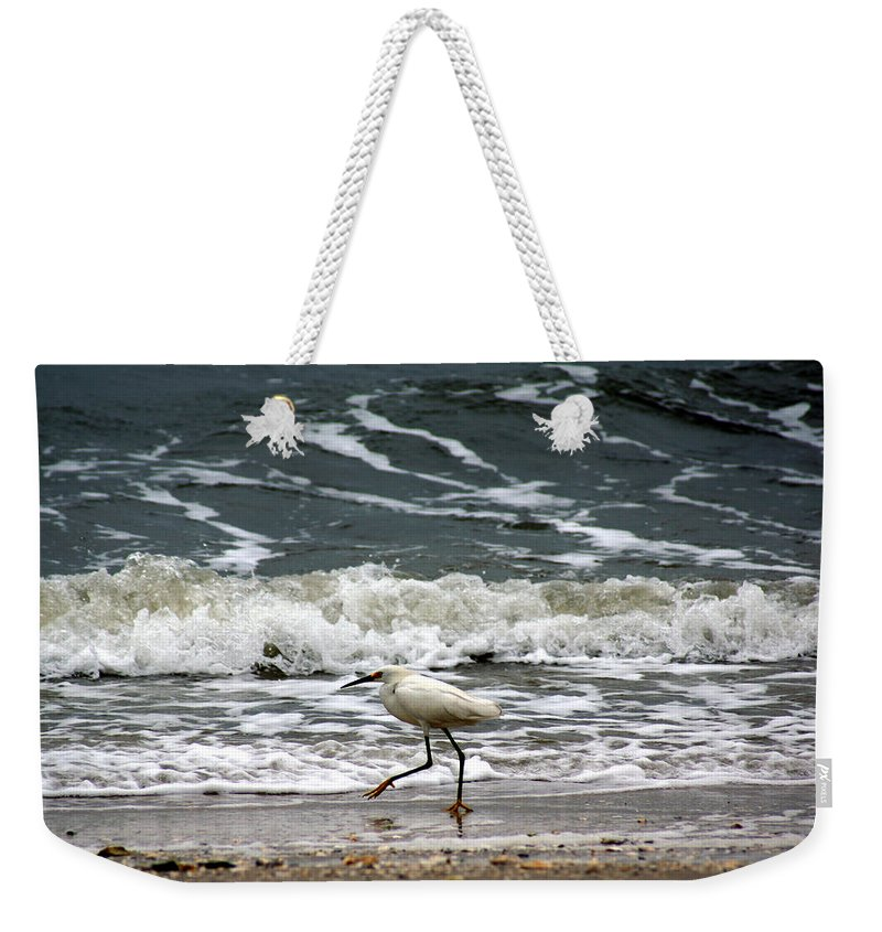 Snowy White Egret Weekender Tote Bag featuring the photograph Snowy White Egret by Kim Pate
