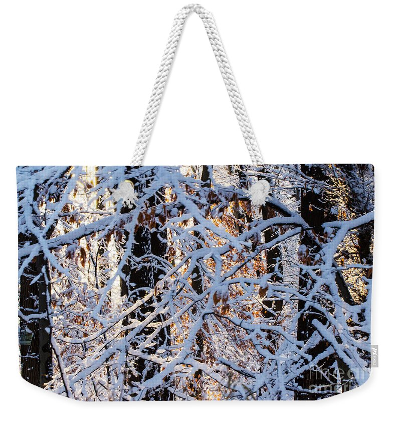 Woods Weekender Tote Bag featuring the photograph Snowy Woods by Judy Wolinsky