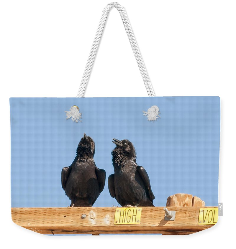Wildlife Weekender Tote Bag featuring the photograph So I Say To George Don't Touch That Wire by Jim Thompson