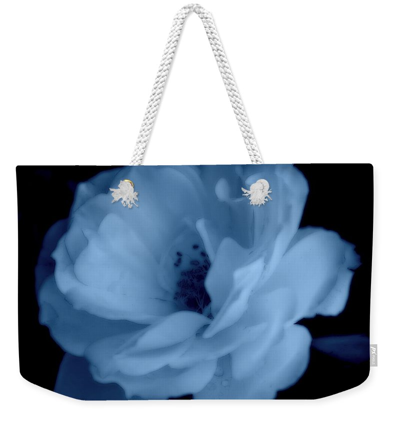 Rose Weekender Tote Bag featuring the photograph Soft Blue Perfection by Kathy Sampson