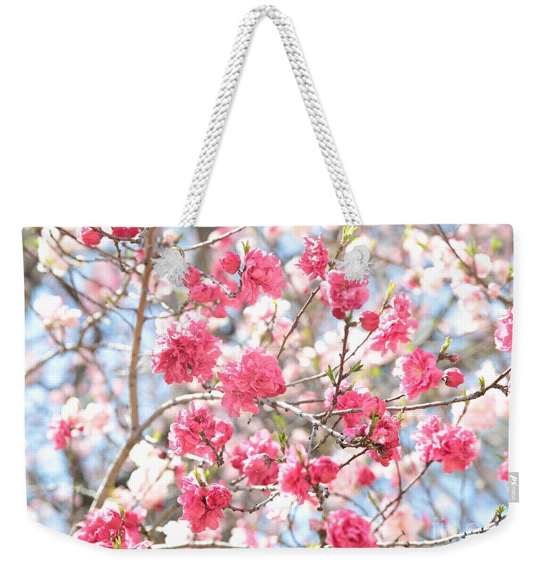 Soft Colors Weekender Tote Bag featuring the photograph Soft Colors Of Spring by Carol Groenen