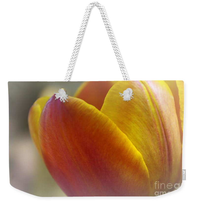Flower Weekender Tote Bag featuring the photograph Soft Details by John S