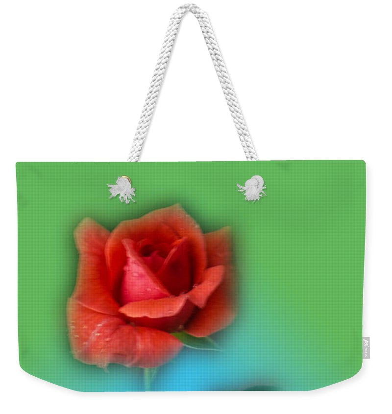 Rose Weekender Tote Bag featuring the photograph Soft by Donna Brown