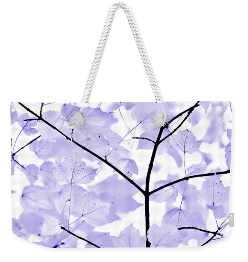 Leaf Weekender Tote Bag featuring the photograph Soft Lavender Leaves Melody by Jennie Marie Schell