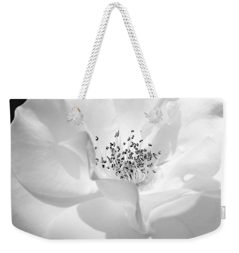 Rose Weekender Tote Bag featuring the photograph Soft Petal Rose In Black And White by Jennie Marie Schell