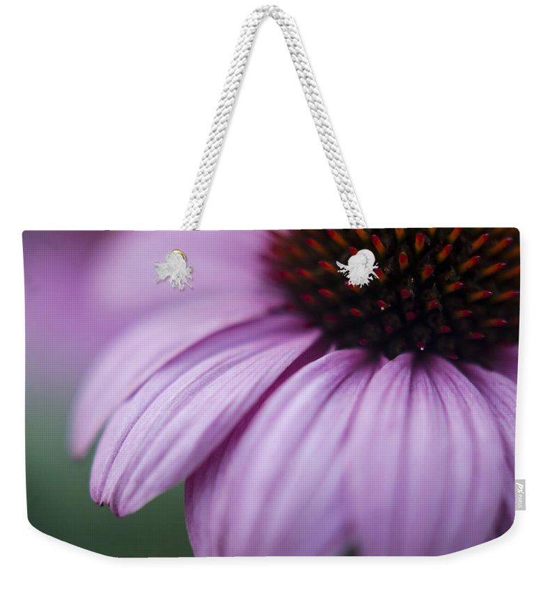 Echinacea Purpurea Weekender Tote Bag featuring the photograph Softly by Heather Applegate