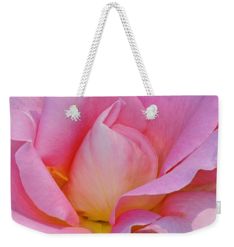 Pink Rose Weekender Tote Bag featuring the photograph Softness In Pink by Dave Mills