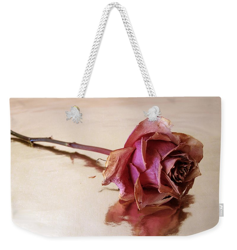 Flower Weekender Tote Bag featuring the photograph Solitaire by Jessica Jenney