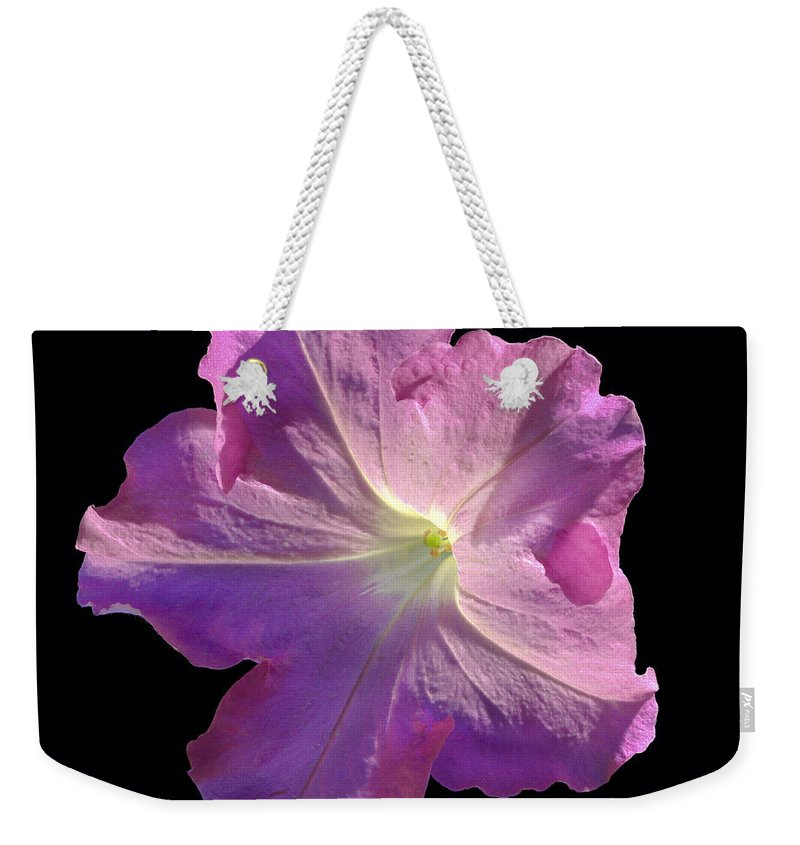 Flower Weekender Tote Bag featuring the photograph Solitary Pink Petunia by Jean Noren