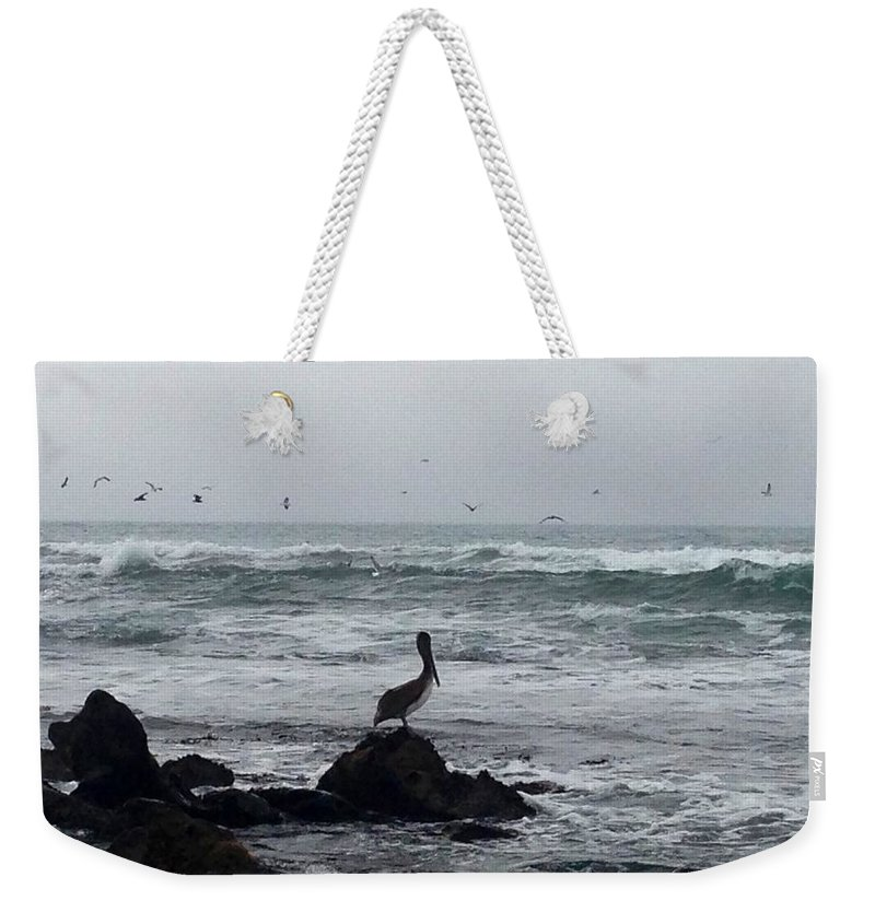 Ocean Weekender Tote Bag featuring the photograph Solo Pelican by Aprelle Pierce