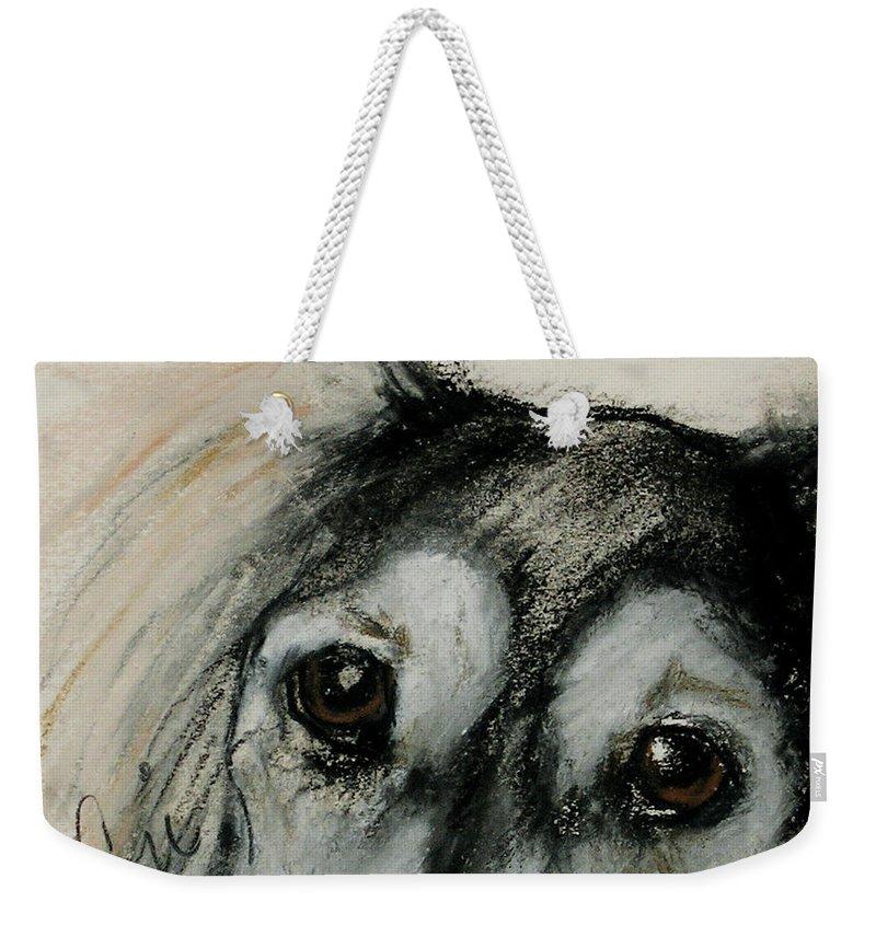 Saluki Weekender Tote Bag featuring the drawing Sophia's Eyes by Cori Solomon