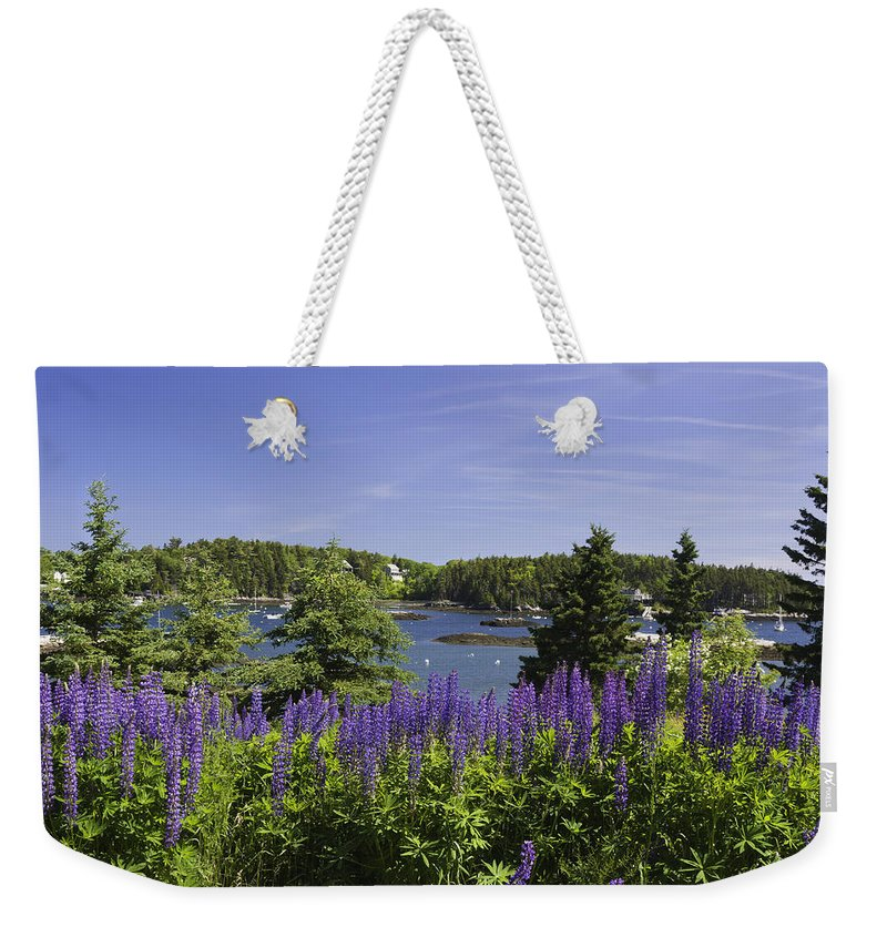 Maine Weekender Tote Bag featuring the photograph South Bristol And Lupine Flowers On The Coast Of Maine by Keith Webber Jr
