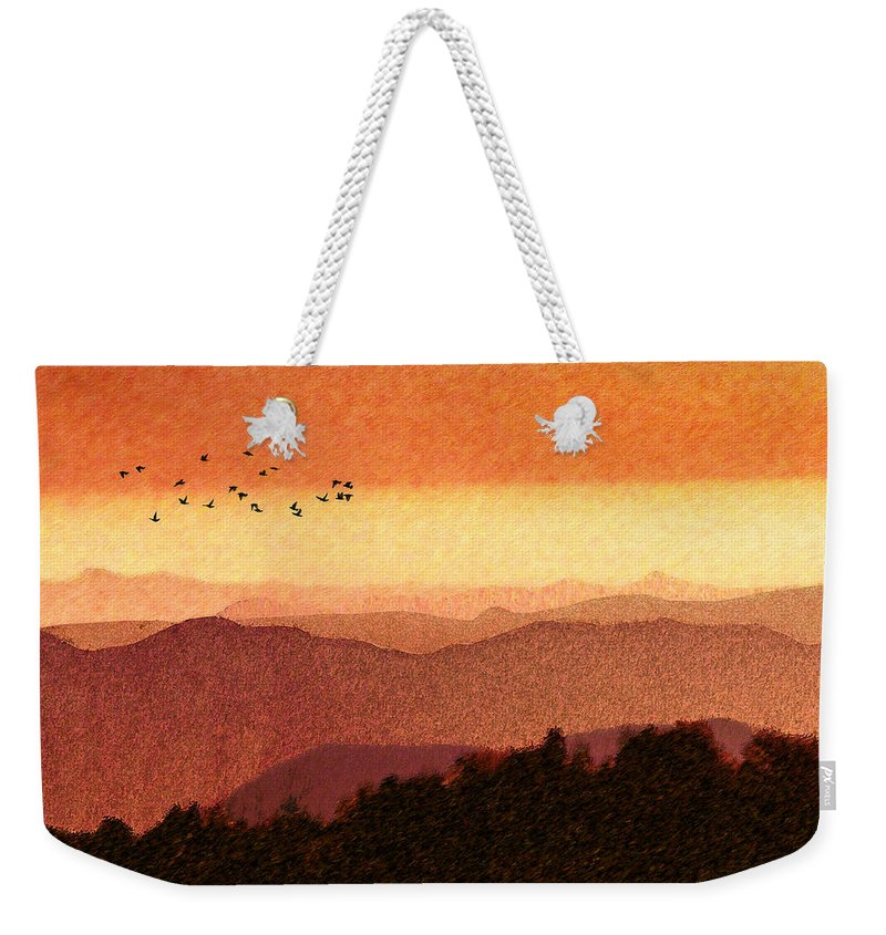 South For The Winter Weekender Tote Bag featuring the photograph Here Comes The Sun by Paul Wear