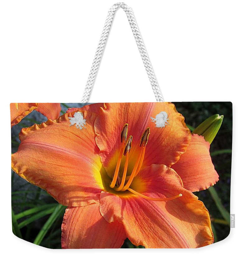 South Seas Daylily Weekender Tote Bag featuring the photograph South Seas Daylily by MTBobbins Photography