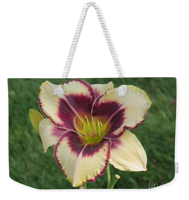 Aimee Mouw Weekender Tote Bag featuring the photograph Southern Belle by Aimee Mouw