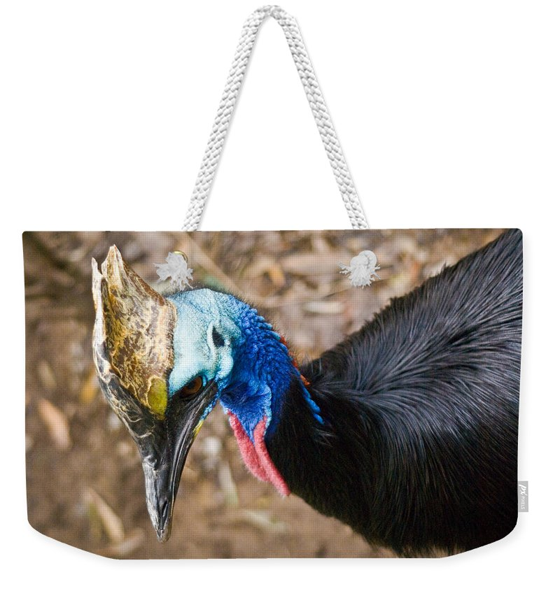 Cassorary Weekender Tote Bag featuring the photograph Southern Cassowary Portrait by Douglas Barnett