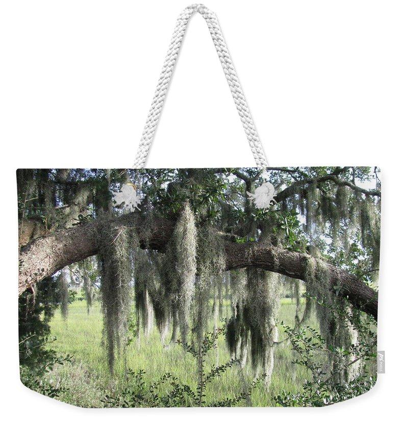 Marsh Weekender Tote Bag featuring the photograph Spanish Moss Draped Oak by Ellen Meakin