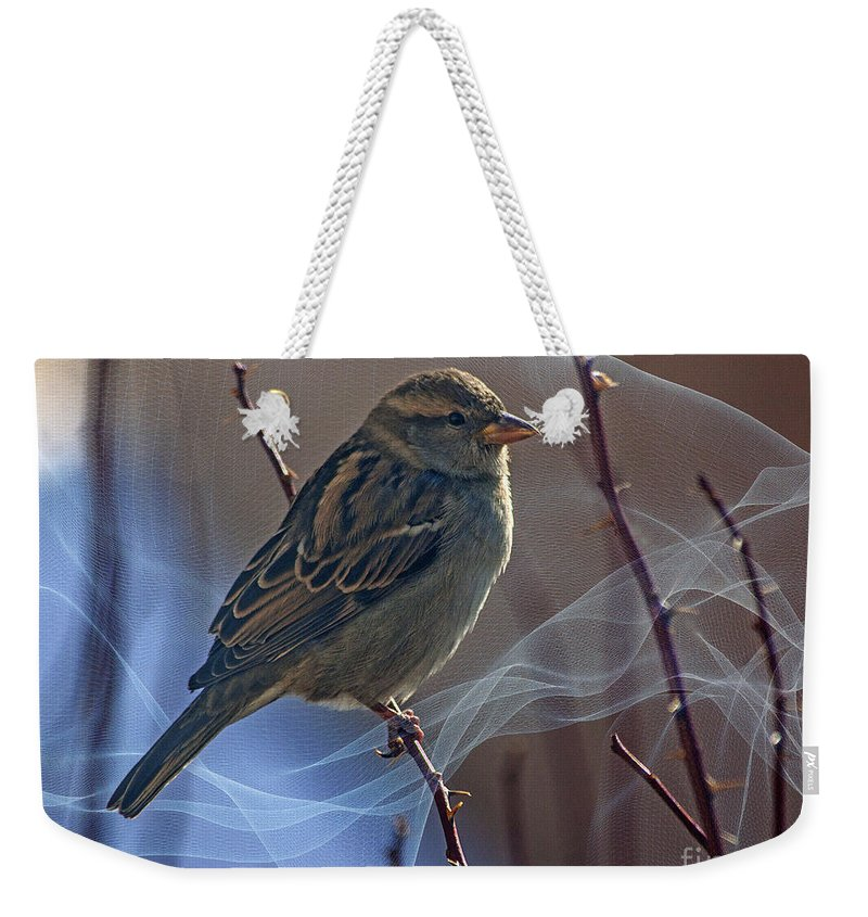 Sparrow Weekender Tote Bag featuring the photograph Sparrow In A Weave by Janice Pariza