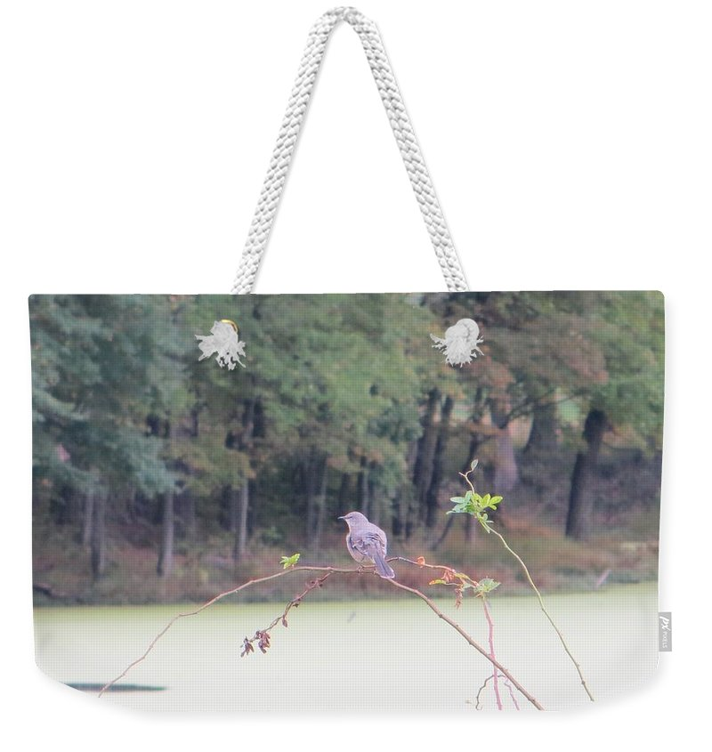 Sparrow Weekender Tote Bag featuring the photograph Sparrow On Arc by Sonali Gangane